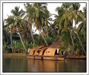 Backwaters - Kerala India